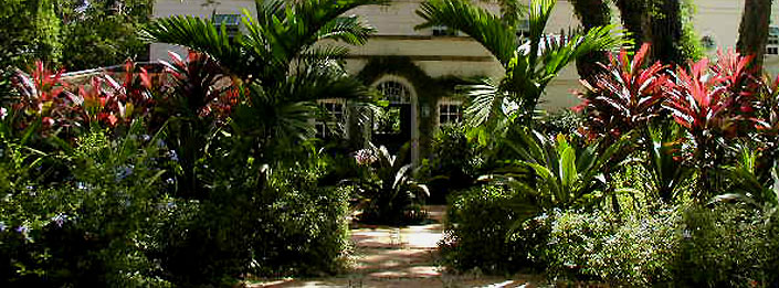 Barbados Tropical House